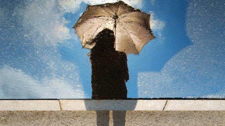 Fot. Unsplash / CC0 Public Domain