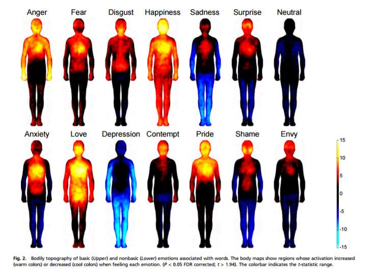 Screen z publikacji Bodily maps of emotions / Aalto University