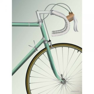 racing-bicycle-plakat-vissevasse