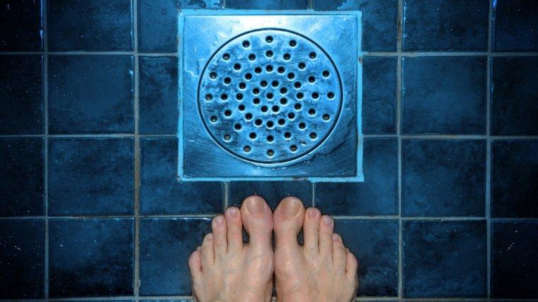 Masz w łazience rybiki? Powiem ci, jak pozbyć się tych obrzydliwych robali