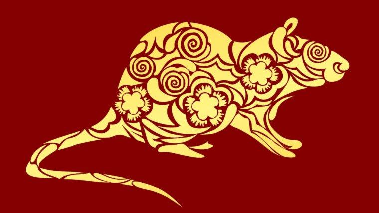 Horoskop chiński 2019 - Szczur w roku Świni