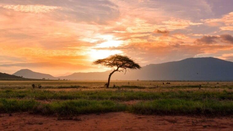 Gdzie na aktywne wakacje? Atrakcje turystyczne Afryki